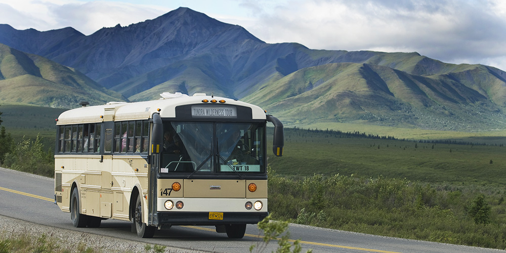 Which Denali National Park Bus Tour Is Best